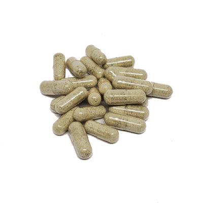 psilocybin caps